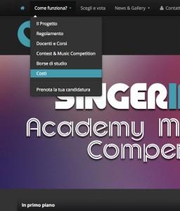 SINGER-INSIDE
