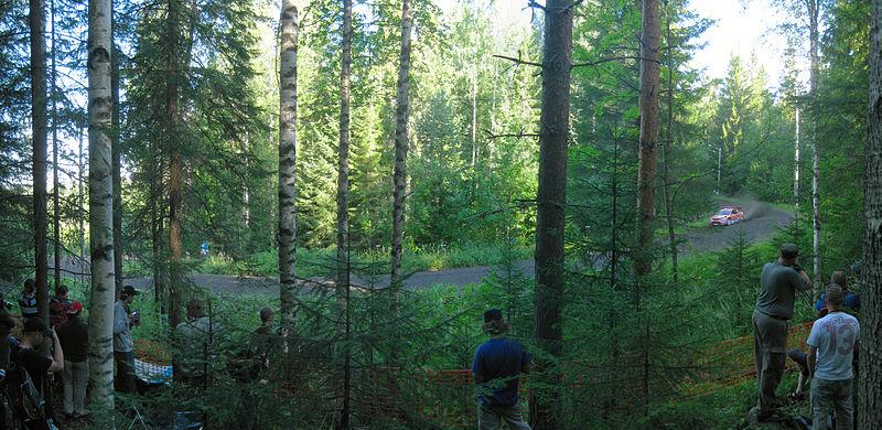 Finlandia bosco