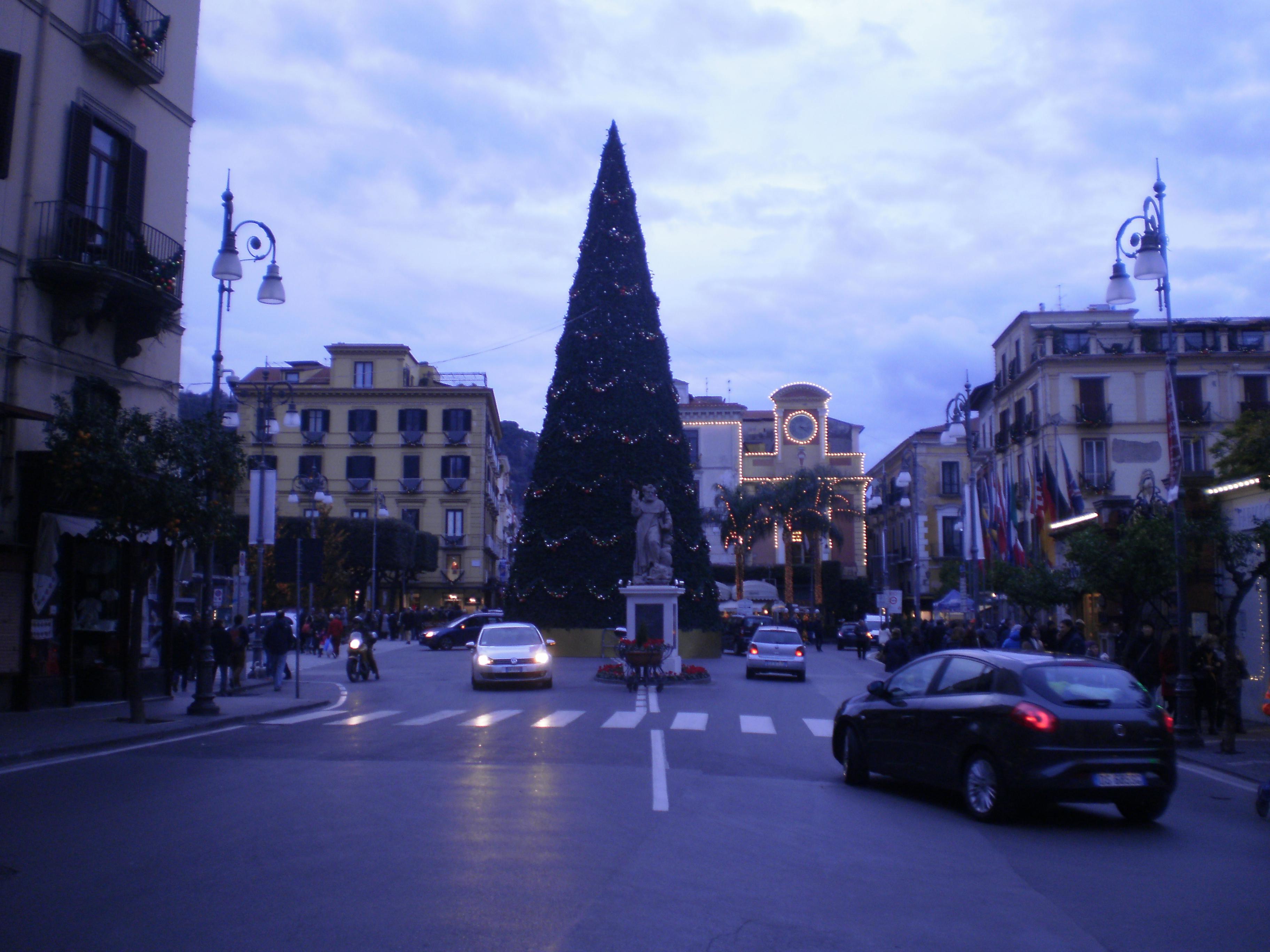 Albero in piazza Tasso a Sorrento