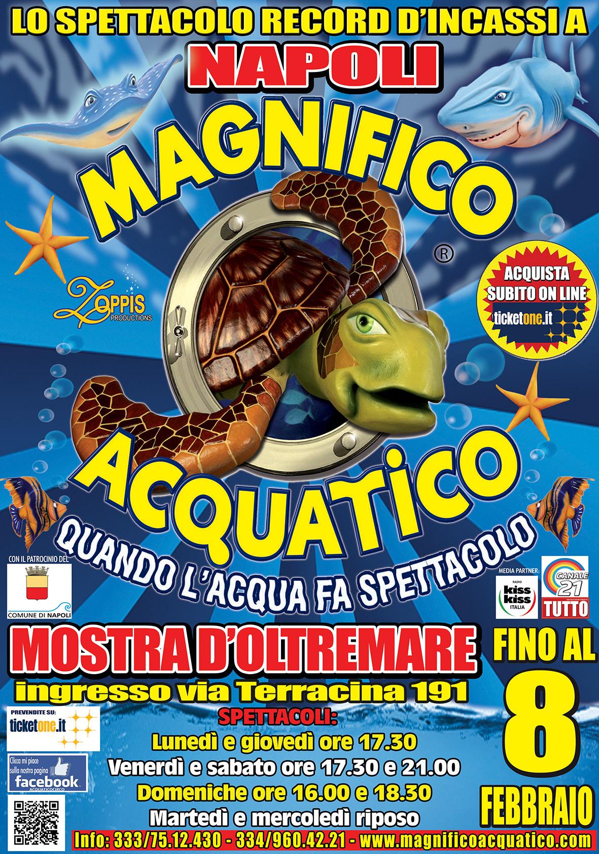 Il circo acquatico