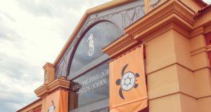 Portici, il Nuovo Centro Ricerche Tartarughe Marine