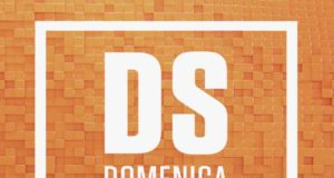 LA DOMENICA SPORTIVA logo