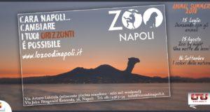 Animal Summer 2018, zoo di Napoli