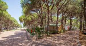 Camping Village Baia Blu La Tortuga, Aglientu in Sardegna