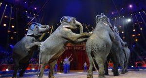 Festival Internazionale del Circo di Montecarlo