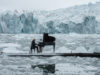 Il compositore e pianista Ludovico Einaudi